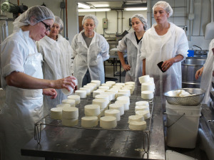 Cheesemaking at Vermont Tech
